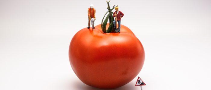 migliora il tuo rendimento nel lavoro o nello studio con la tecnica del pomodoro